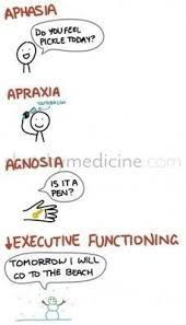 Image result for apraxia occupational therapy