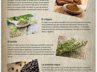 9 especias para tener mas energía. #Infografia #salud #health – #Infografia #Alzheimer #Demencias