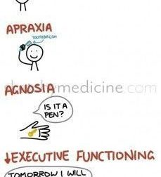 Aphasia, Apraxia, agnosia and decreased executive functioning defined – #Infografia #Alzheimer #Demencias