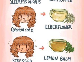 Welke thee bij welke stofwisseling – #Infografia #Alzheimer #Demencias