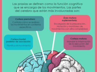undefined – #Infografia #Alzheimer #Demencias