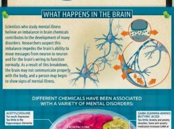 – #Infografia #Alzheimer #Demencias
