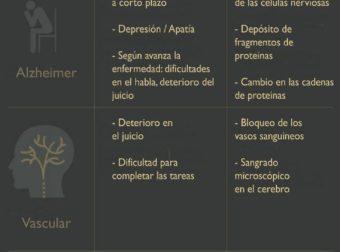 -104104285 922×5.057 píxeles – #Infografia #Alzheimer #Demencias