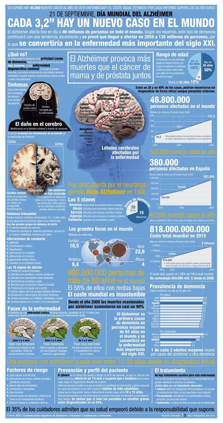 Detail of the infographic of the Agency EFE World Alzheimer's Day | Magazine...