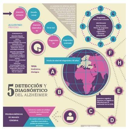 Excelentes Infografías del Alzheimer (Descritas y a tamaño real)