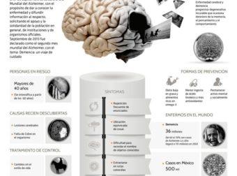 Día mundial del Alzheimer #infografia #infographic #health – #Infografia #Alzheimer #Demencias