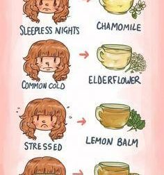 Which tea should you drink? Wonder no more. – #Infografia #Alzheimer #Demencias