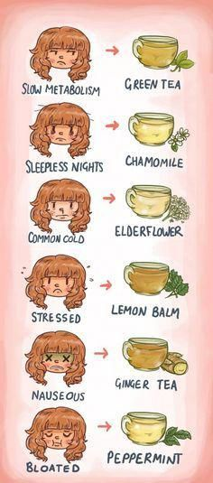 Which tea should you drink? Wonder no more.