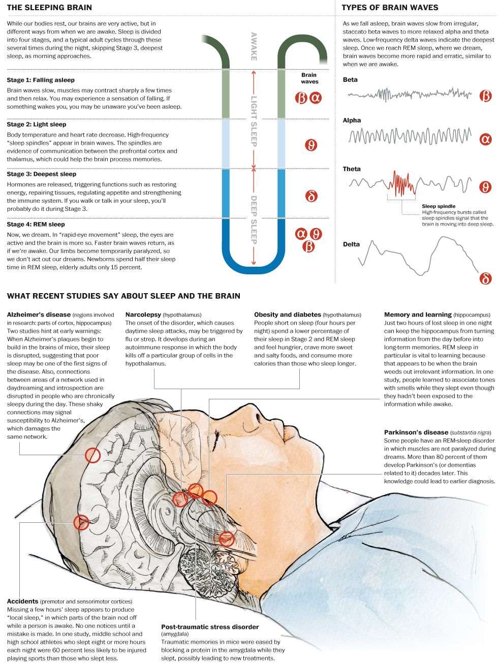 Disease and sleep: Recent studies find new links