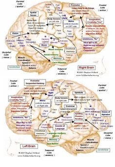 Visual Learning about Lewy Body Dementia