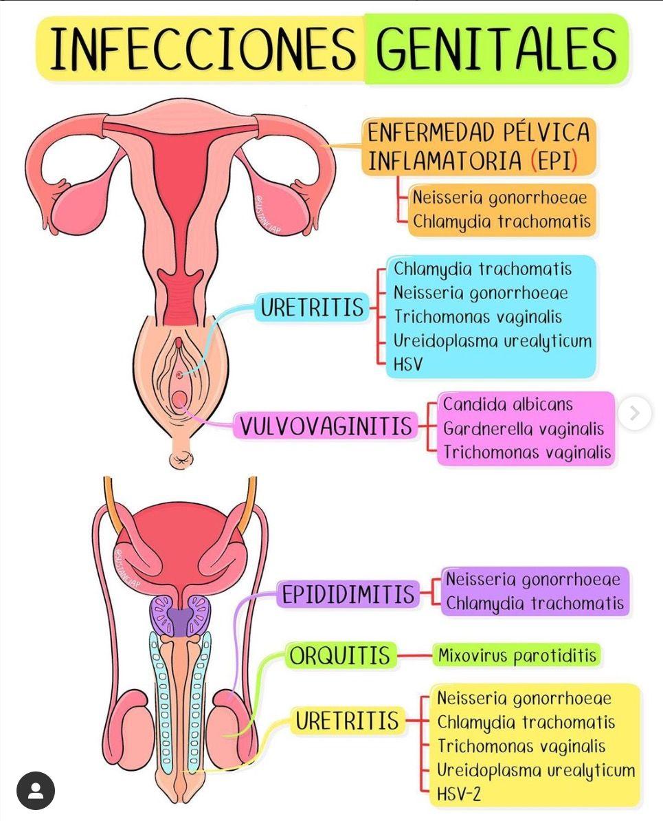 Infecciones genitales (1)
