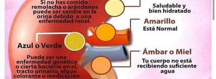 Inicio – #Infografia #Alzheimer #Demencias
