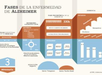 Fases del Alzheimer #infografia #infographic #health – TICs y Formación – #Infografia #Alzheimer #Demencias