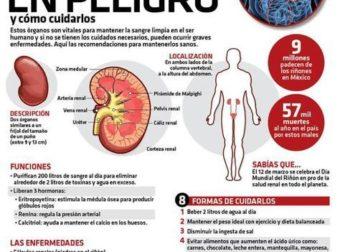#Infografia Riñones en peligro y cómo cuidarlos – #Infografia #Alzheimer #Demencias